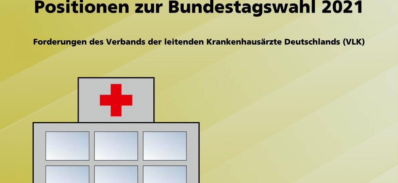 vlk-positionspapier_bundestagswahl_web_Page_1